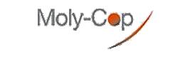 Imagen del cliente https://molycop.com/