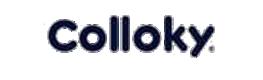 Imagen del cliente http://www.colloky.cl/